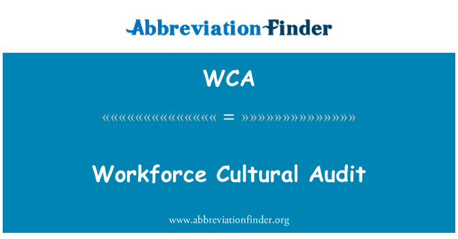 WCA: Workforce Cultural Audit