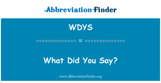 WDYS: What Did You Say?