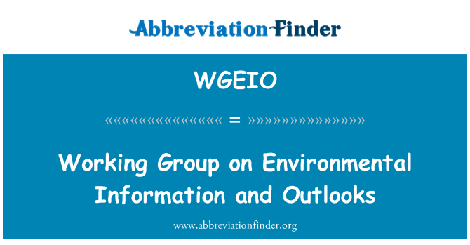 WGEIO: Working Group on Environmental Information and Outlooks
