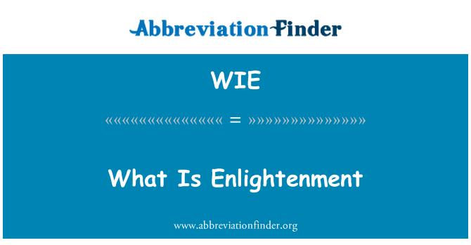 WIE: What Is Enlightenment