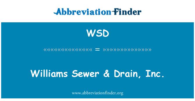 WSD: Williams Sewer & Drain, Inc.