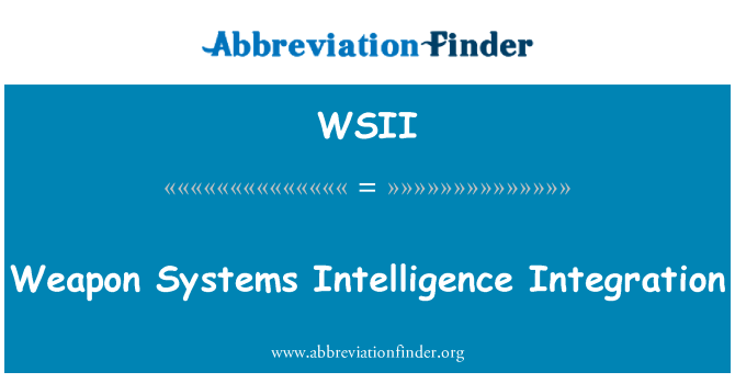 WSII: Weapon Systems Intelligence Integration
