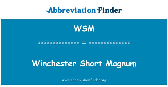 WSM: Winchester Short Magnum