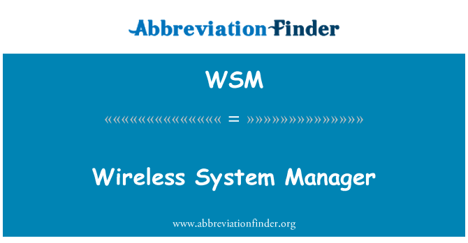 WSM: Wireless System Manager