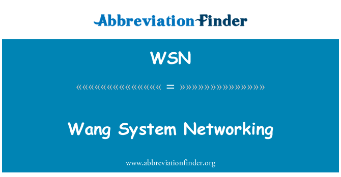WSN: Wang System Networking