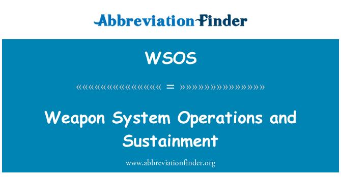 WSOS: 武器系统操作和维持