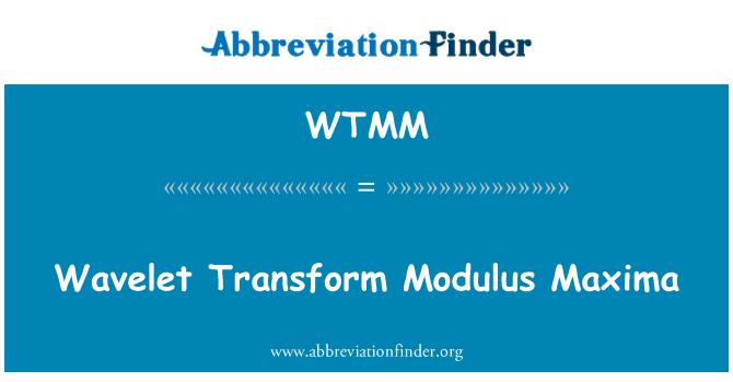 WTMM: Minilainete transformatsioon elastsusmoodul Maxima