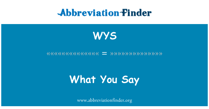 WYS: What You Say
