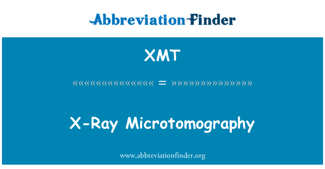 XMT: Microtomografía de rayos x