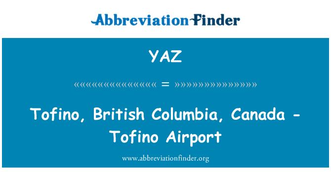 YAZ: 托菲诺,不列颠哥伦比亚,加拿大-托菲诺机场