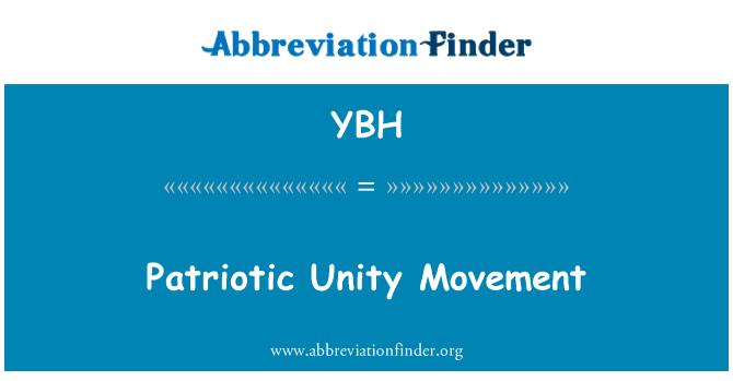 YBH: 爱国统一运动