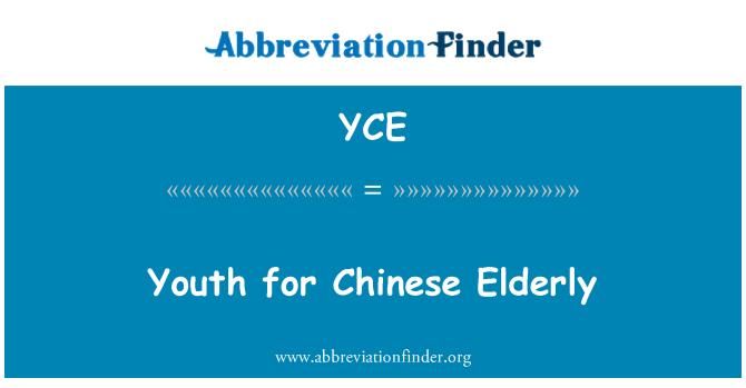 YCE: 中国老年人口的青年