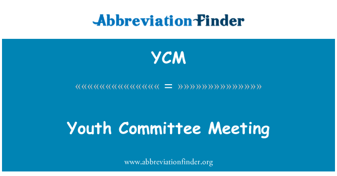 YCM: Youth Committee Meeting