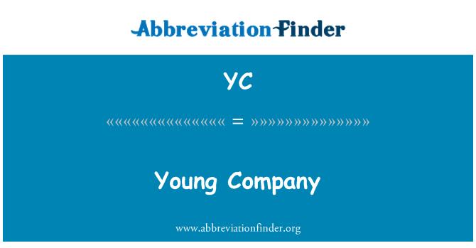 YC: 年轻公司