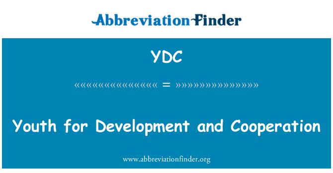 YDC: Jaunimo vystymosi ir bendradarbiavimo