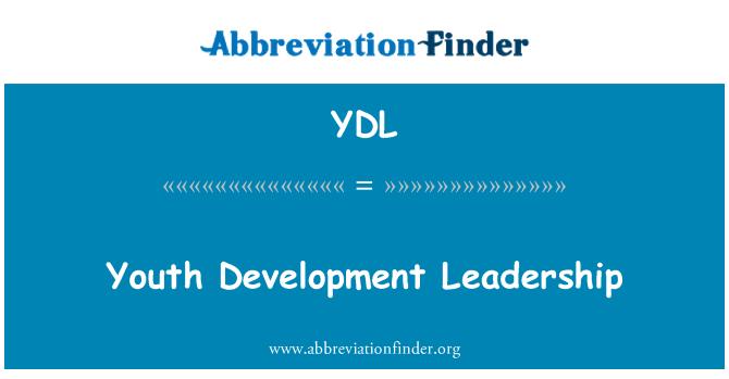 YDL: 青年发展领导才能