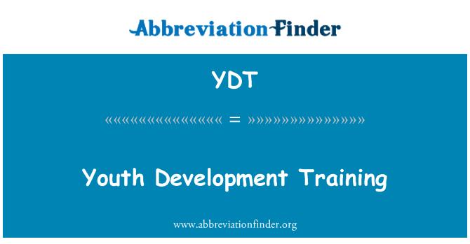 YDT: 青年发展培训