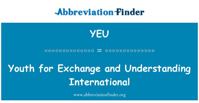 YEU: 交流和理解国际青年
