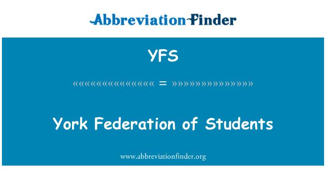 YFS: 纽约学生联合会