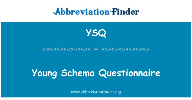 YSQ: Young Schema Questionnaire