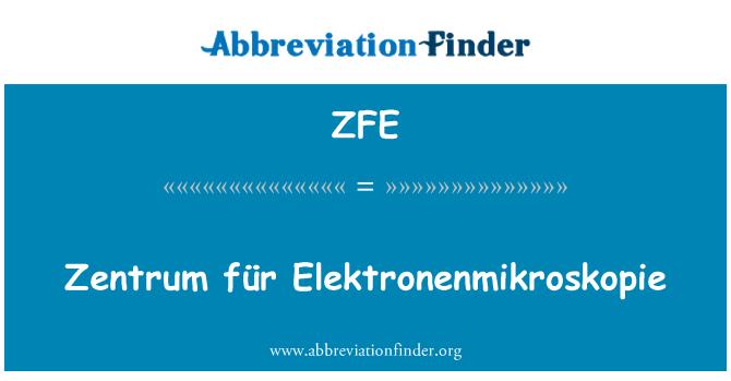 ZFE: Zentrum für Elektronenmikroskopie