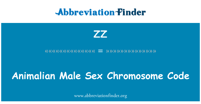 ZZ: Animalian Male Sex Chromosome Code
